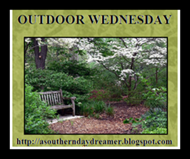 Outdoor-Wednesday-logo_thumb4_thumb1[1]