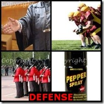 DEFENSE- 4 Pics 1 Word Answers 3 Letters
