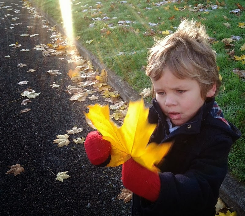 ethan and the leaf