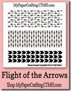 flight of the arrows 200