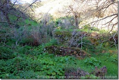 4881 Las Lagunetas-Los Arbejales