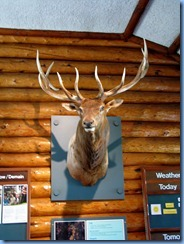 2293 Manitoba Riding Mountain National Park - Visitor Centre Wasagaming