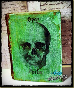 andy skinner skull art altered book