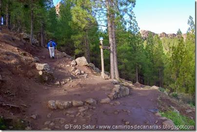7493 La Goleta-Tejeda(Cruce de Caminos)