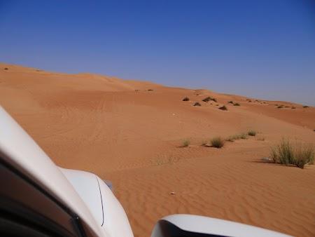 09. Pe dune.JPG