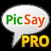 PicSay Pro - Bildbearbeitung APK