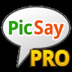 PicSay Pro - Photo Editor v1.8.0.5