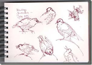 sketches 3 bg