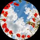 Image Google de drouet roselyne