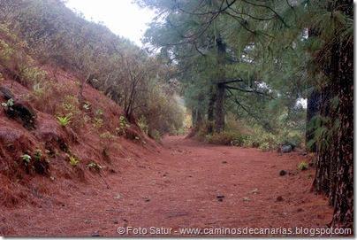 6833 Barranco Andén-Cueva Corcho(Barranco Andén)