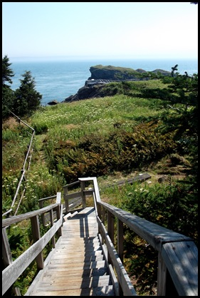 Liberty Point hike Campobello 234