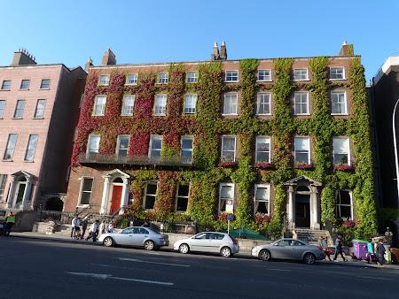 Obiective turistice Dublin: langa St. Stephen's Green