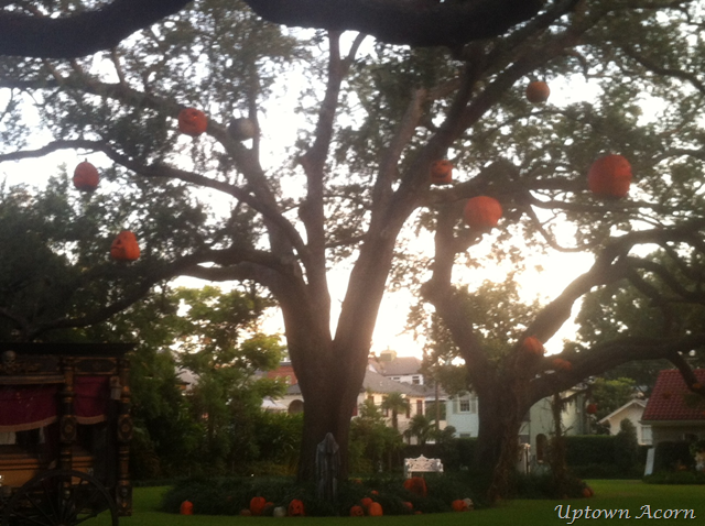 [pumpkins%2520in%2520tree%25202%255B1%255D.png]