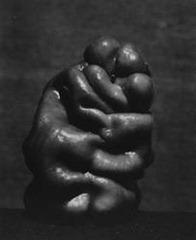Edward Weston - Green Pepper 1930
