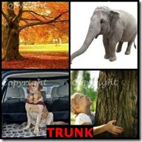 TRUNK- 4 Pics 1 Word Answers 3 Letters