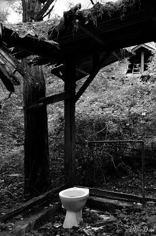 20140903_Gartenhäuser-05.jpg