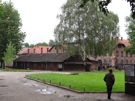 03. La intrare in Auschwitz.JPG