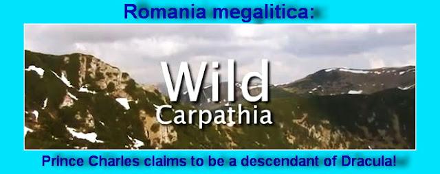 http://1.bp.blogspot.com/-RkW9kQVDMow/T05Jo2JEh-I/AAAAAAAAMsw/irUABDZq3fw/s1600/Wild-Carpathia-2011.jpg