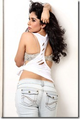 Neha-Bhasin-Hot-Photo-Shoot1
