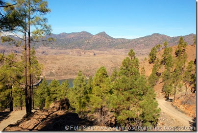 6920 Chira-Cruz Grande(Pinar Pajonales)