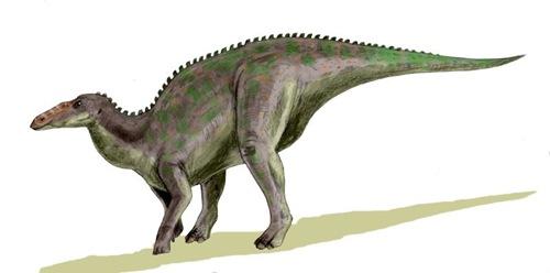Dinossauros viveram até 700