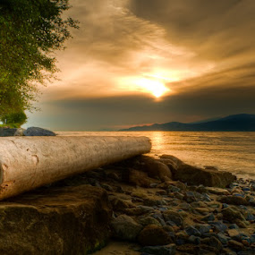 Swirly Log by James Wheeler - Landscapes Waterscapes ( canada, hdr, june, d5000, pictures, lower mainland, ocean, travel, beach, high dynamic range, log, vancouver, photography, james wheeler, point grey, sunset, swirly log, 2010, landscapes, nikon, bc, british columbia )