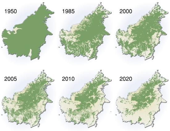 https://lh3.ggpht.com/-SIMYDTEUc_E/UISqI_w0NFI/AAAAAAAAAFU/FAuJ7Am3W44/s1600/about-deforestation-map.jpg
