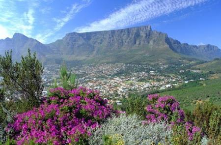 16. Cape Town.jpg
