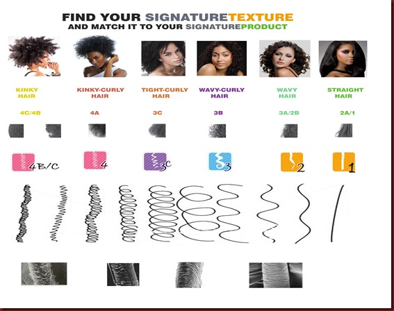 CHART%20copy(1) find your hair texture type