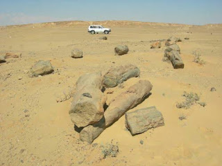 Окаменелые деревья на первом древнем берегу в Сахаре,   Африка - свидетели потопа