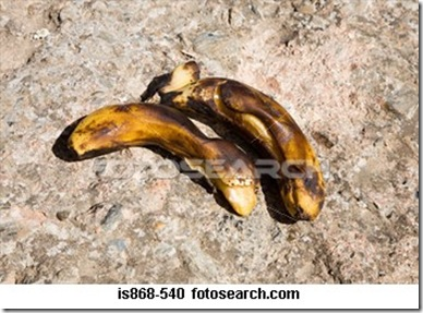 two-rotting-bananas_~IS868-540
