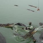 Тайланд 29.04.2011 11-49-25.JPG