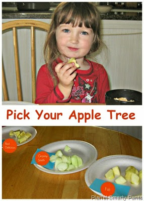 Pick an Apple Tree Through a Taste Test