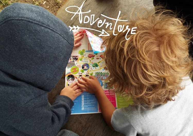 map reading at aldingbourne country centre