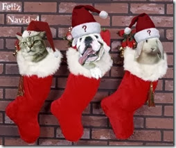 animales navidad (10)