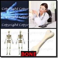 BONE- 4 Pics 1 Word Answers 3 Letters