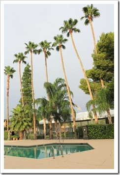 120729_Tucson_RiverparkInn2