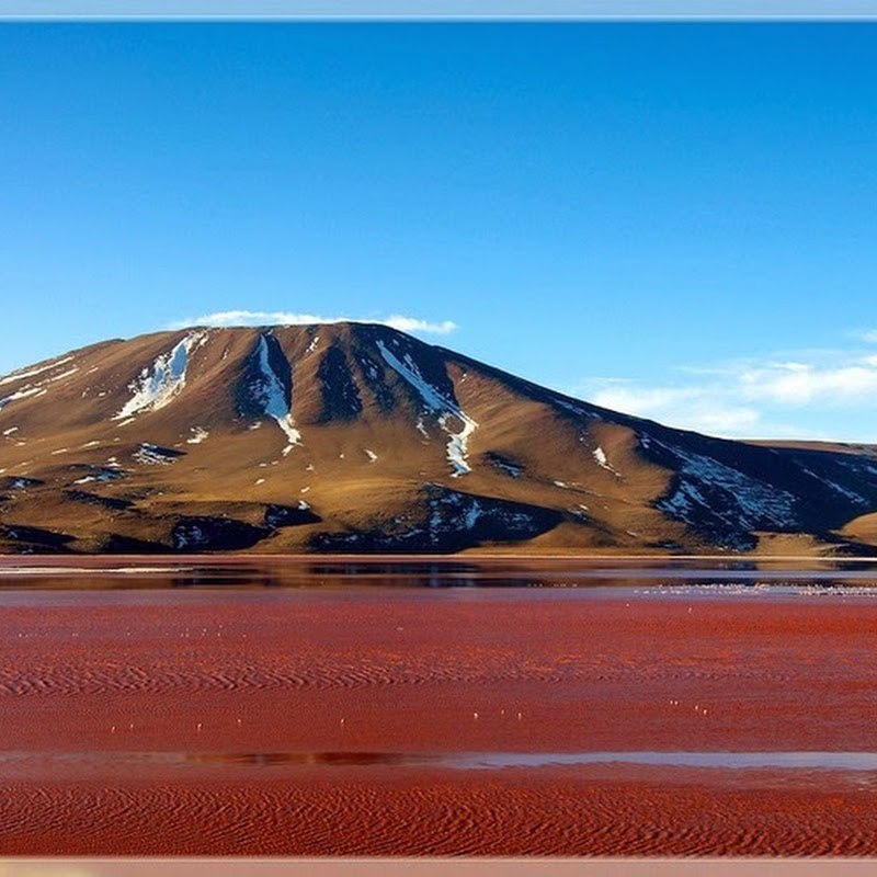 Laguna Colorada: The Red Lagoon of Bolivia