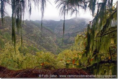 6822 Barranco Andén-Cueva Corcho(Barranco Andén)