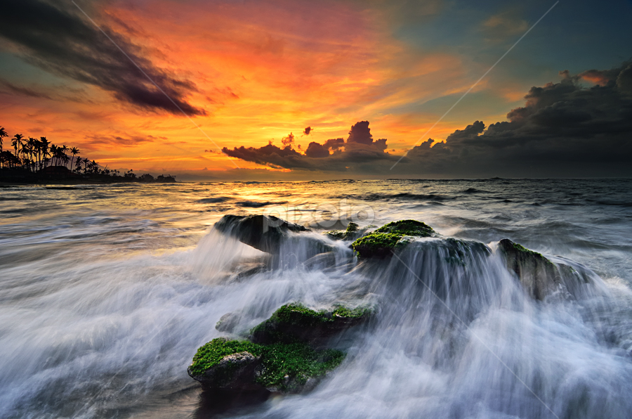 parcela by Raung Binaia - Landscapes Waterscapes