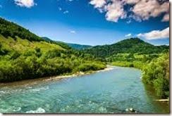 auto-organizzazione: fiume libero