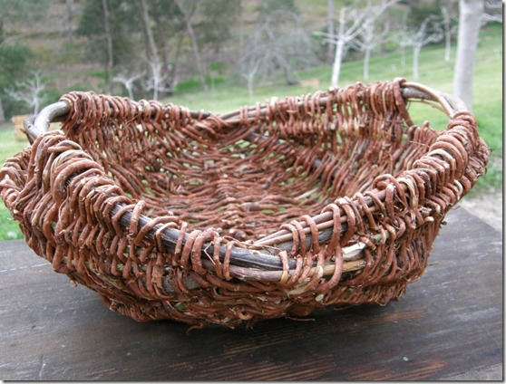 pine root basket