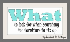 WHAT to look for when searching for furniture to fix up [sawdust and embryos}