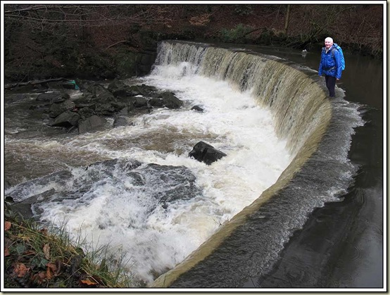 Norman takes a stroll across the weir
