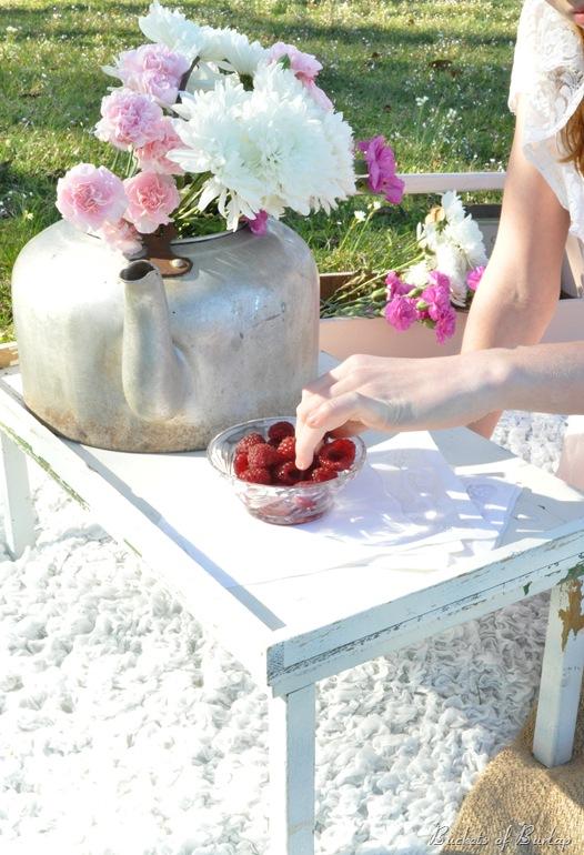 spring berries 2