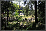 Blick vom Wald über die Rolava nach Nové Hamry