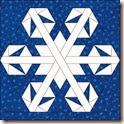 Snowflake 6  v2