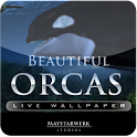 Orca Whale  live wallpaper logo