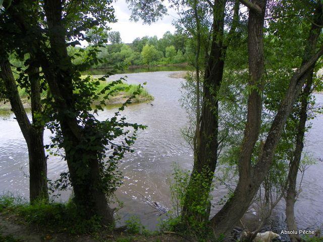 Loire au niveau d'Épercieux-Saint-Paul, amont, rive droite photo #1017