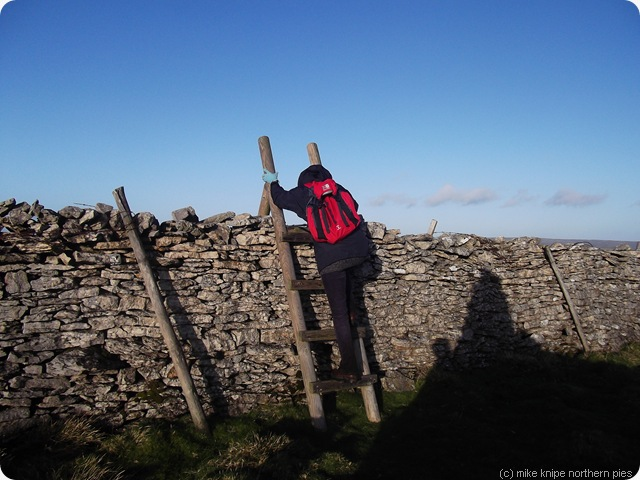 bev surmounts that stile